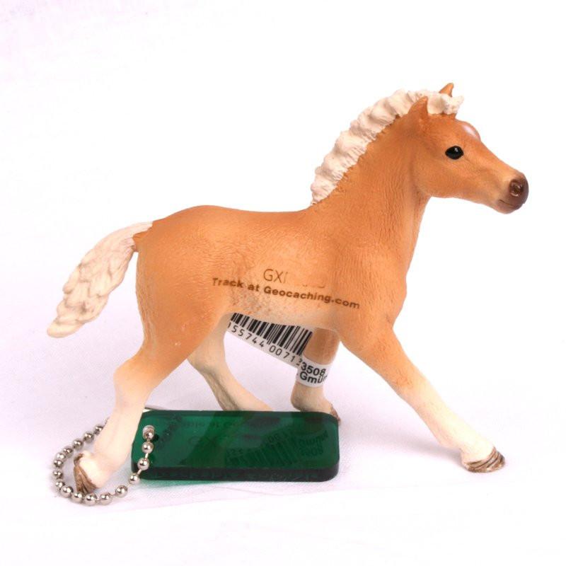 Trackable Animal - paard Haflinger veulen