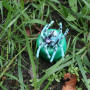 Spinne petlingset - blue