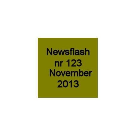 13-123 November 2013