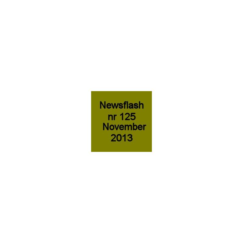 13-125 November 2013