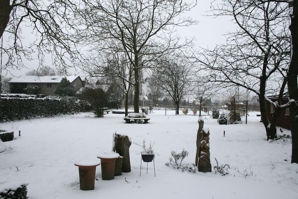 Winter in the Netherlands, 17 januari 2013
